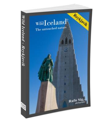 Wild_Iceland_Reykjavik